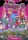 Big Bugs 3 | Flashcards