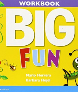 Big Fun 2  | Workbook with Audio CD