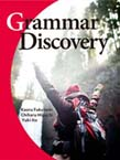 Grammar Discovery