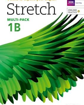 Stretch 1 | Multi-Pack B