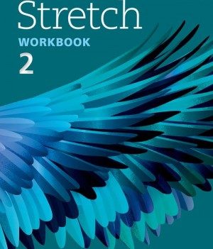 Stretch 2 | Workbook